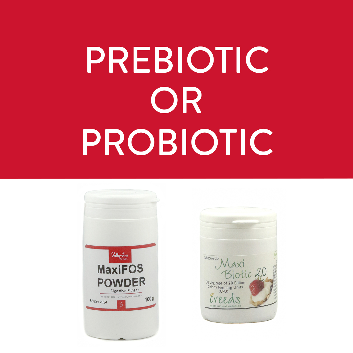 Probiotic and Prebiotic